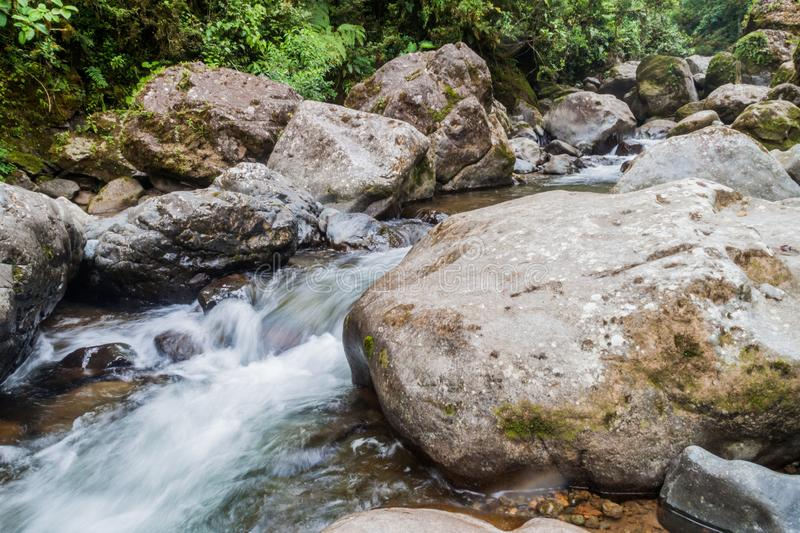 Rapids of Rio Hornito river in Pana. Ma royalty free stock photo