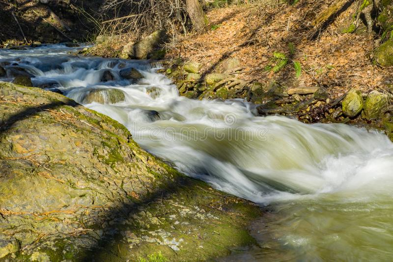 Rapids on a Wild Mountain Trout Stream royalty free stock photo