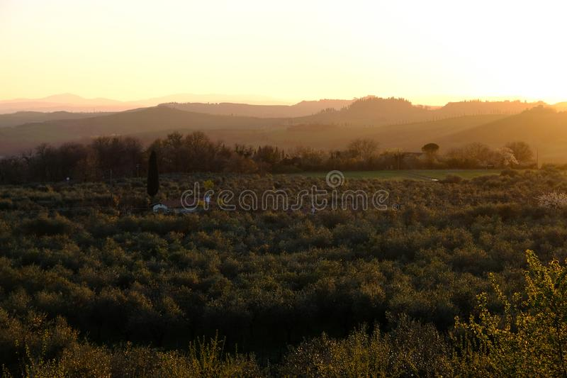 Rapolano Terme, Tuscany, Włochy Krajobrazowa reklama zmierzch zdjęcia stock