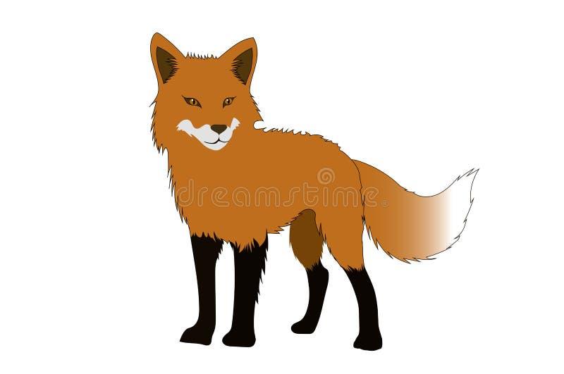 A raposa ilustração do vetor