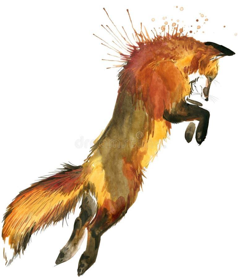 raposa Caça de Fox Raposa bonito Ilustração do Fox da aquarela ilustração do vetor