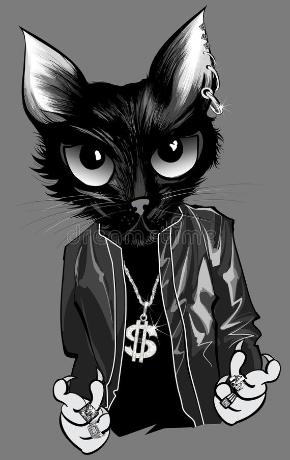 Rapper do gatinho ilustração do vetor