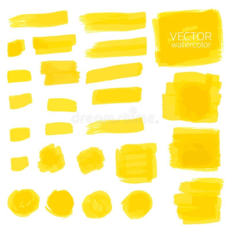Rappes jaunes de balai d'aquarelle Ensemble de brosse de vecteur illustration stock