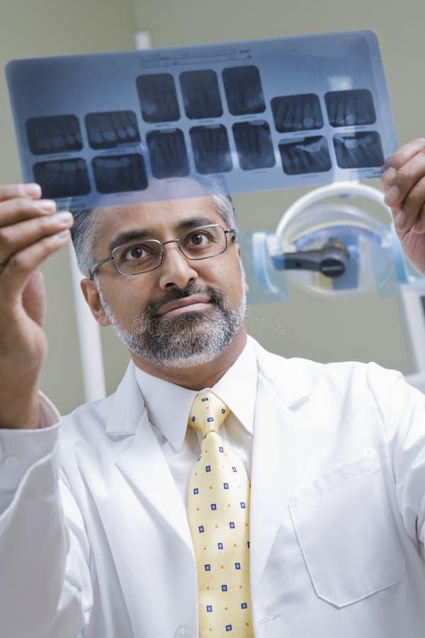 Rapporto dei raggi x di Examining del dentista fotografie stock libere da diritti