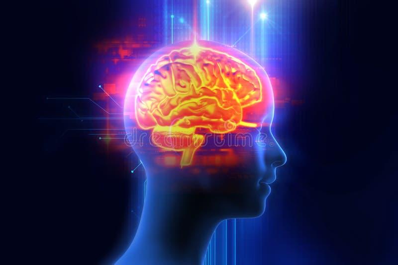 rappresentazione 3d del cervello umano sul fondo di tecnologia illustrazione di stock