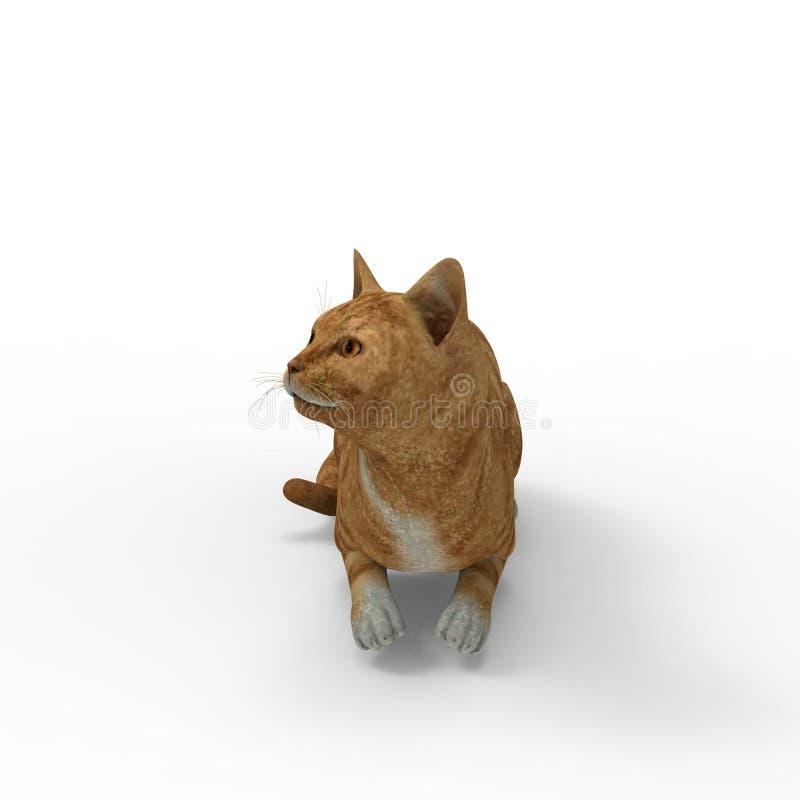 rappresentazione 3d del gatto creata usando uno strumento del miscelatore illustrazione di stock