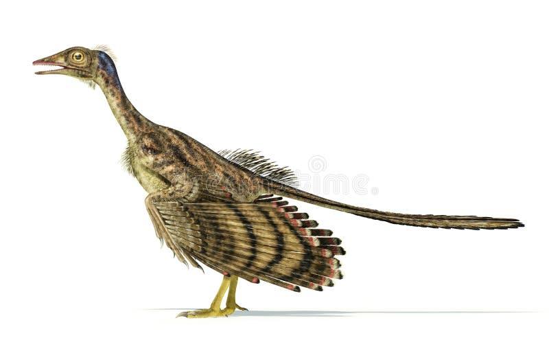 Rappresentazione fotorealistica di un dinosauro dell'archaeopteryx. royalty illustrazione gratis