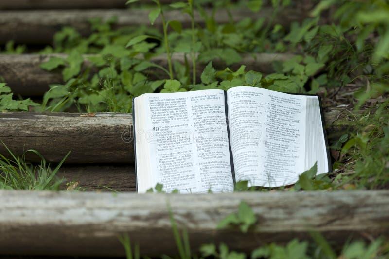Rapprochement de la Bible ouverte au chapitre 40 d'Isaïe. Extérieur sur escalier en bois. Copiez l'espace. Projectile horizontal image libre de droits