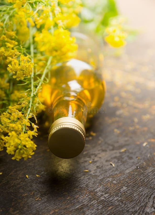 Rapsöl mit frischer Rapspflanze stockbild
