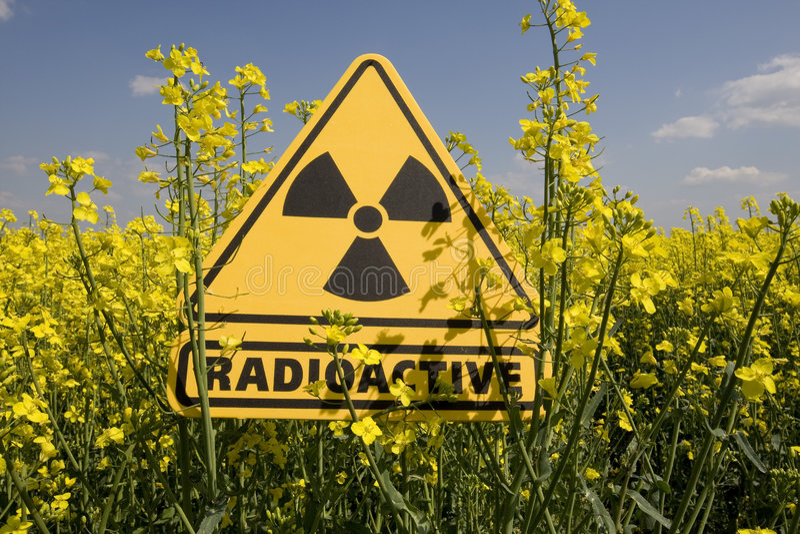 Rapsfeld mit dem Zeichen radioaktiv lizenzfreie stockbilder