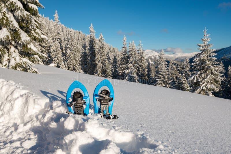 Raquettes bleues se tenant dans la neige profonde image stock