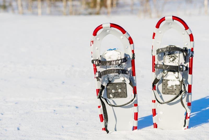Raquettes dans la neige image libre de droits