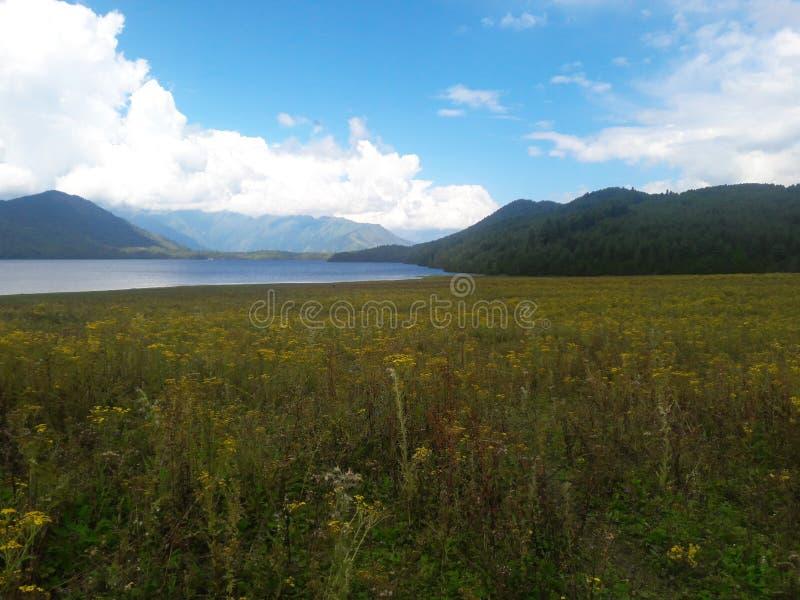 Rara湖情景  库存照片