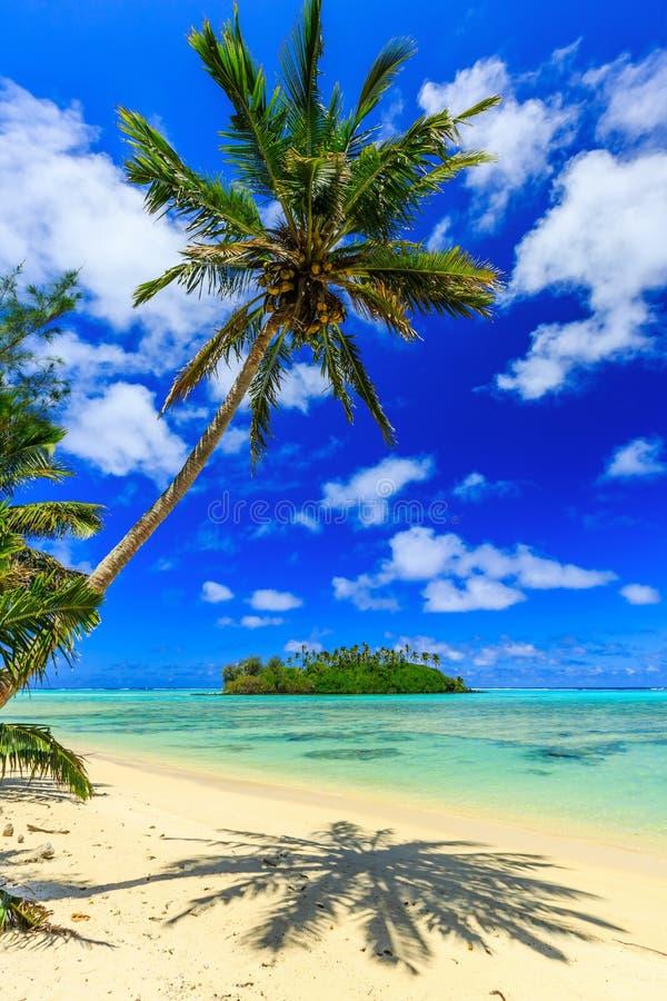 Rarotonga, islas de cocinero imagen de archivo libre de regalías