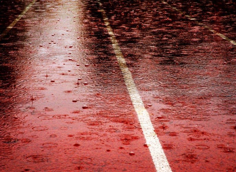 Rasa Padająca Padać obraz stock