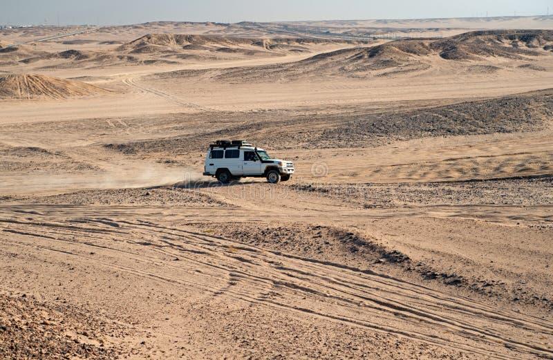 Rasa w piasek pustyni Samochodowy suv pokonuje piasek diun przeszkody Turniejowa bie?na wyzwanie pustynia Samoch?d jedzie offroad obrazy royalty free