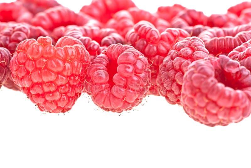 Rasberries fotos de stock