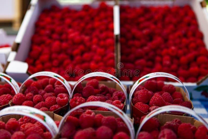 Rasberries para a venda no mercado fotografia de stock
