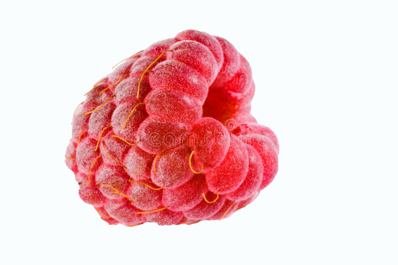 rasberry определите стоковые фото