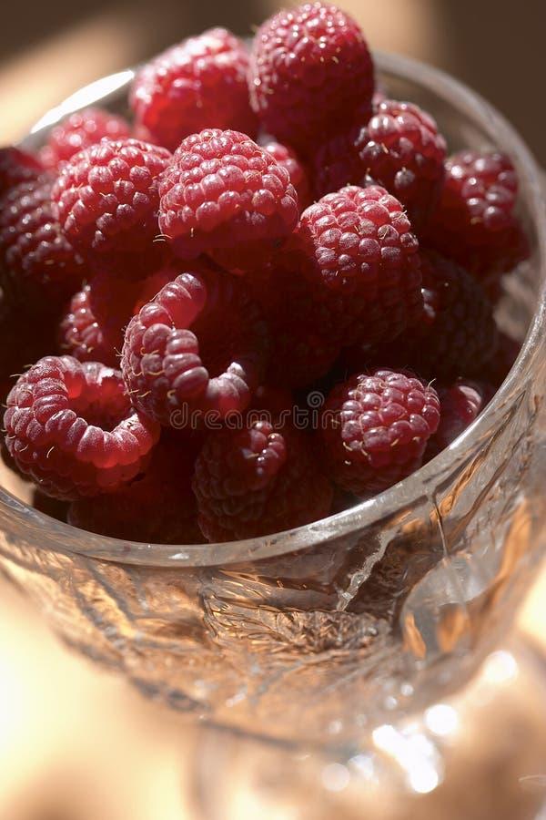 rasberry zdjęcie royalty free