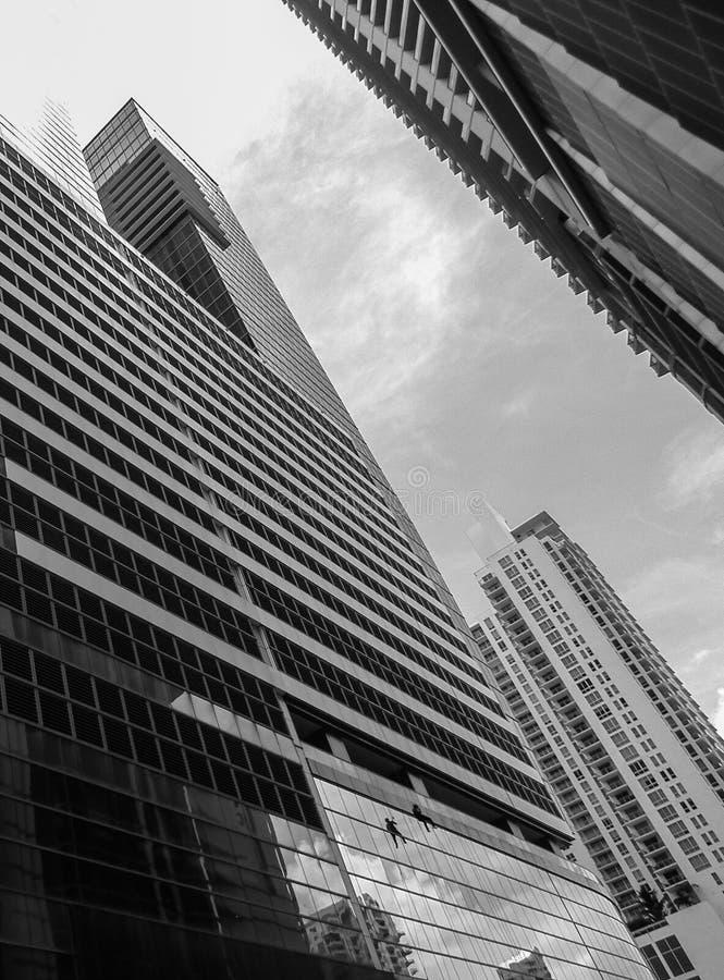 Rascacielos de Miami foto de archivo