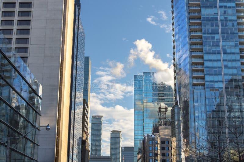 Rascacielos nuevamente construidos en Toronto céntrico, Ontario, Canadá fotografía de archivo libre de regalías