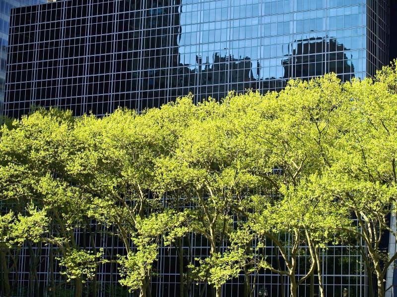 Rascacielos y árboles imagen de archivo