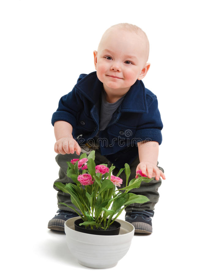 Download Rascal and flowers stock photo. Image of smile, young - 24137628