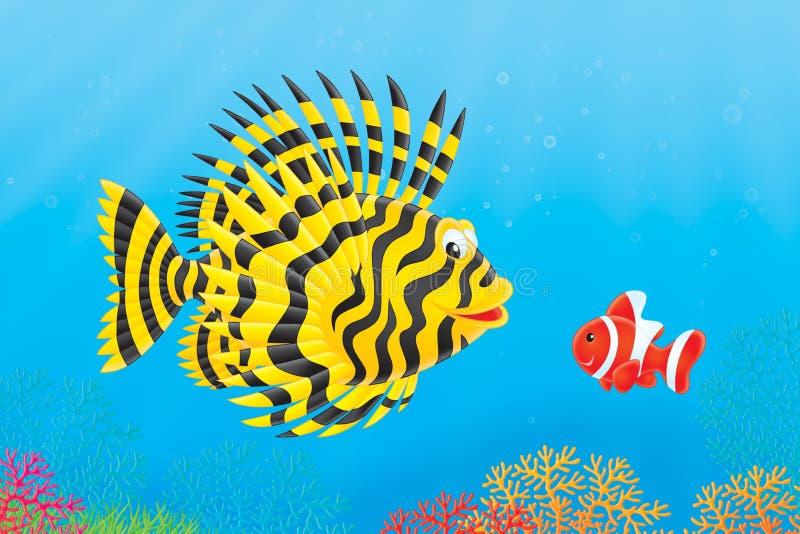 Rascasse et anemonefish illustration stock