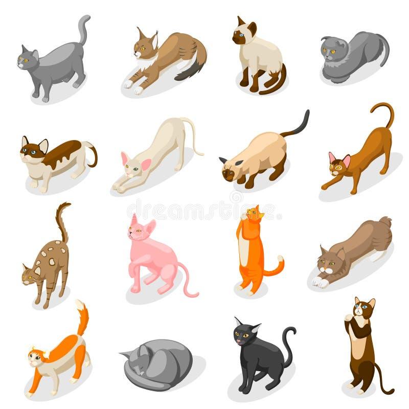 Rasechte Katten Isometrische Pictogrammen stock illustratie