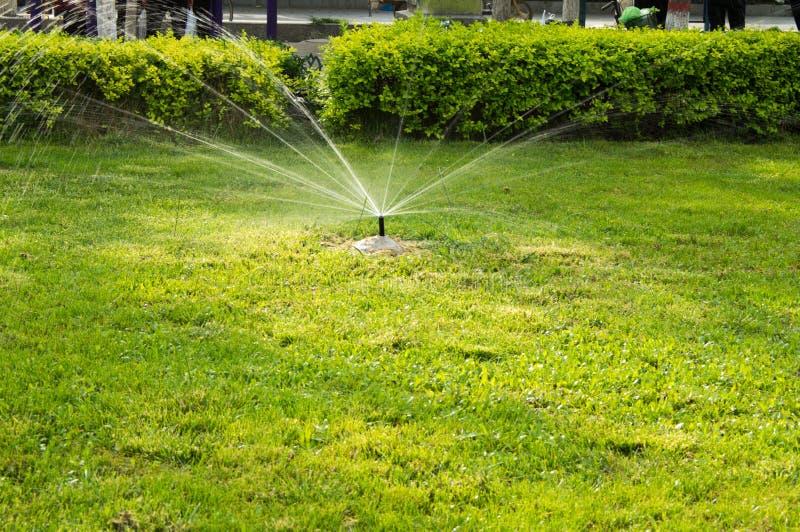 Rasen Bewässerungssystem rasen bewässerung stockfoto bild wachstum bewässerung 33069722