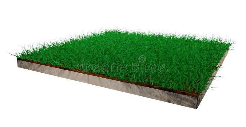 Rasen des Grases 3d stockfotografie