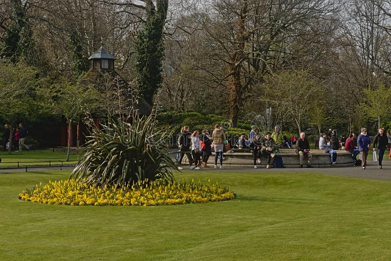Rasen mit Blumenbeet und Brunnen St Stephen im grünen Stadtpark, Dublin lizenzfreies stockbild