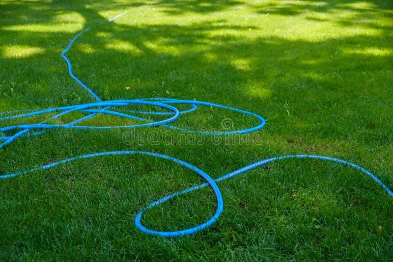 Rasenberieselungsanlagen-Sprühwasser über grünem Gras, Bewässerung lizenzfreie stockfotografie
