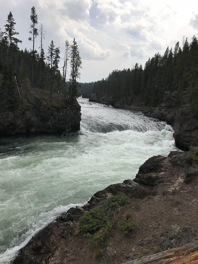 Rasender Fluss lizenzfreie stockbilder