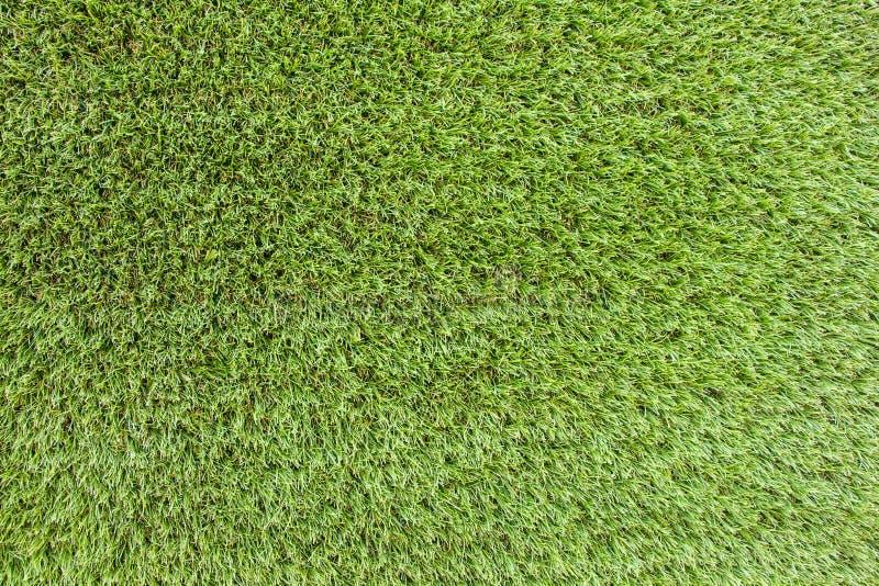 Rasenflächehintergrund lizenzfreie stockbilder