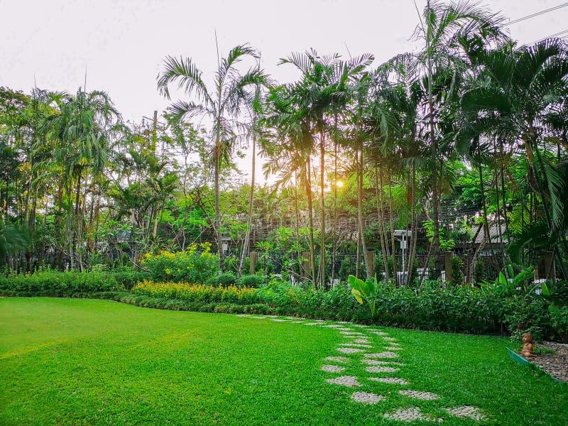 Rasenhinterhof gr?nen Grases Smoth mit Kurvenmustergehweg des KiesSprungbretts auf frischem Gr?nrasen in einem Garten, Blume lizenzfreie stockbilder