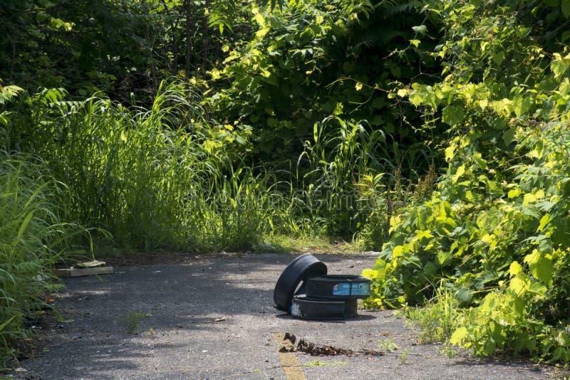 Rasenrand auf einem Fahrradweg lizenzfreies stockbild