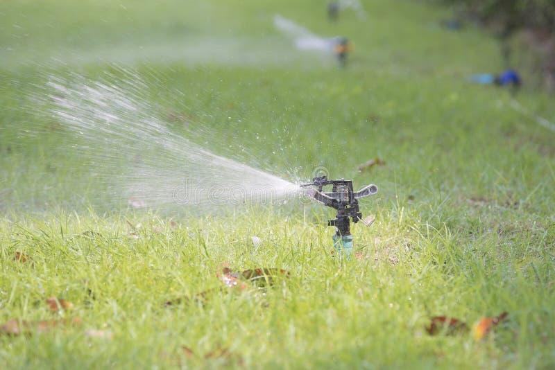Rasenwasser-Berieselungsanlagen-Sprühwasser über Gras lizenzfreie stockfotografie