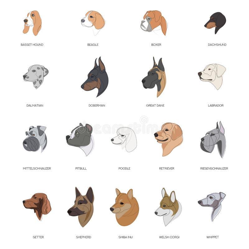 Raser av hundar som är dragna med minimalt format Vektorillustration vektor illustrationer