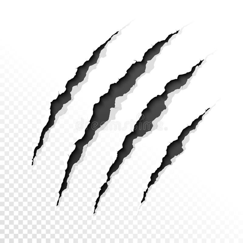 Rasguños de las garras stock de ilustración