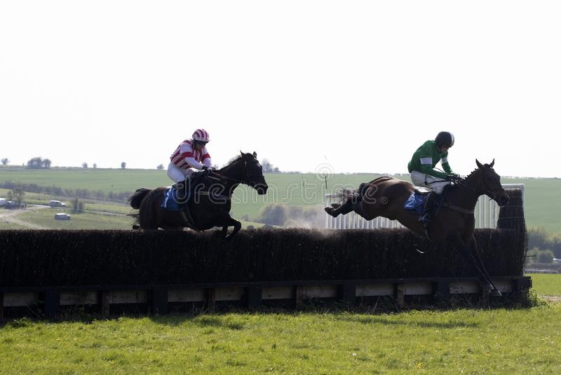 Raspaard en jockey die over een omheining springen stock foto