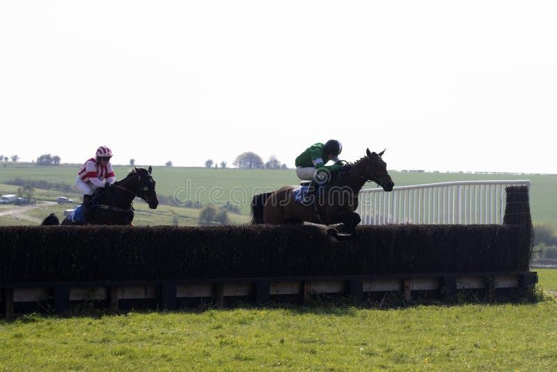 Raspaard en jockey die over een omheining springen royalty-vrije stock afbeelding