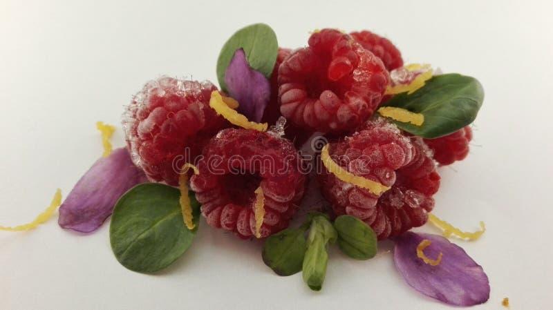 raspberries fotografia de stock