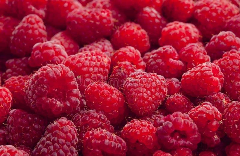 Raspberries. Inside, indoor, indoors, interior, interiors, natural, foodstuff, nutritive, fruit, fruits, berry, raspberry, health, healthy, nutrition stock image