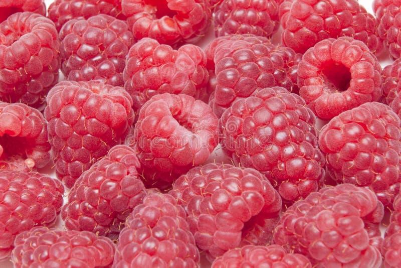 Download Raspberries stock image. Image of fresh, garden, fruits - 27997681