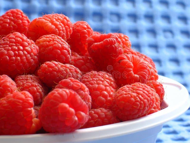 Raspberries stock image
