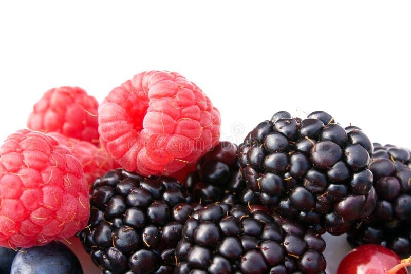 Download Raspberries And Blackberries Stock Photo - Image: 16632528