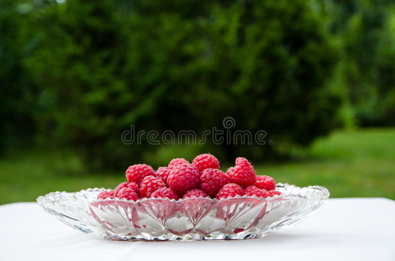 Download Raspberries in a bowl stock image. Image of composition - 33428307
