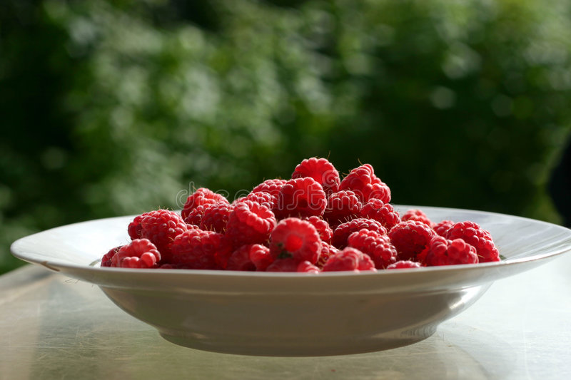 Raspberries in bowl on outdoor table royalty free stock images
